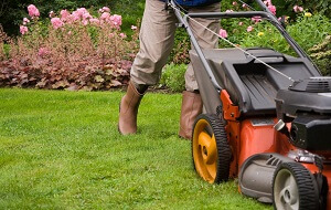 What You Need To Know About Spring Lawn Care and Liquid Aeration