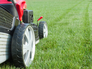 Lawn Care Management To A Healthy Yard