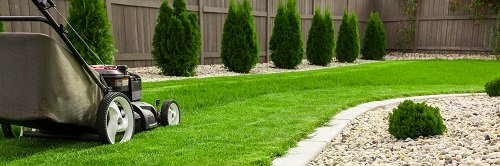 Lawn Care Conway SC