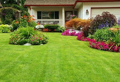 How To Achieve A Healthy Lawn You Once Dreamed Of