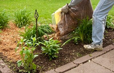 Lawn Care Guide on Mulching During Winter