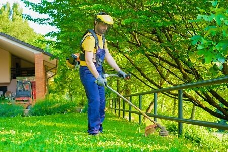 Find The Perfect Lawn Care Professional For You