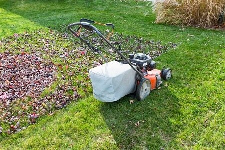 Lawn Care Professionals on The Importance of Mulching