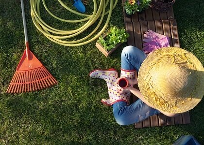 Proper Lawn Maintenance During Long Hot Summer Days