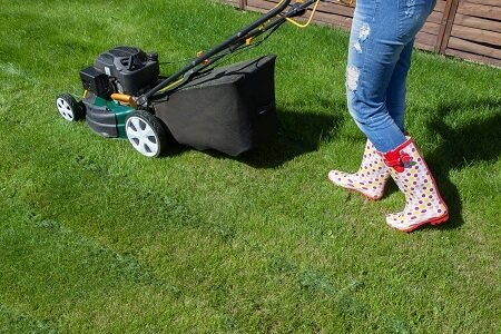 Fundamental Lawn Care Guide to Lawn Mowing