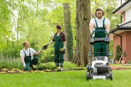How To Find The Best Lawn Care Service