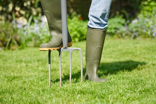 Why Aeration Is Important In Lawn Care