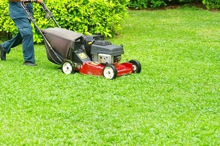 Grow a Greener Lawn With These Lawn Care Tips