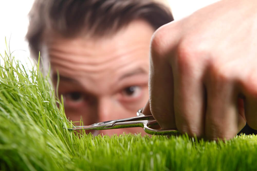 How to Keep Your Conway Lawn Healthy