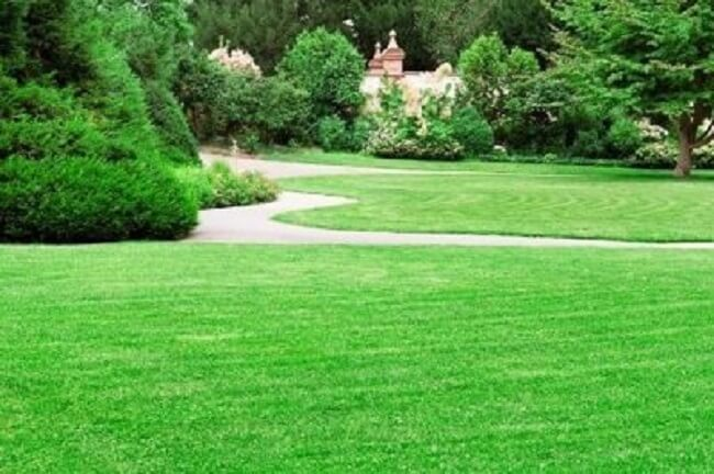Lawn Care Tips That You Should Know To Keep Your Grass Healthy