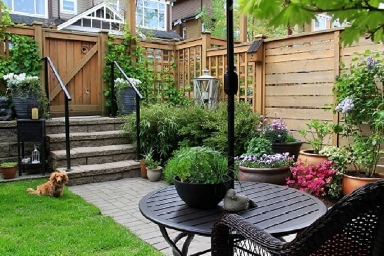 Lawn Care Guide on Maximizing Your Small Yard