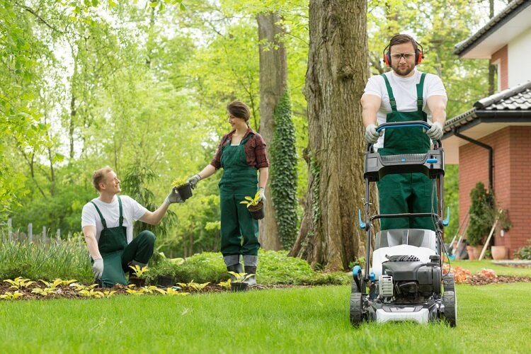 Quality Lawn Care Guide For Every Conway Homeowner