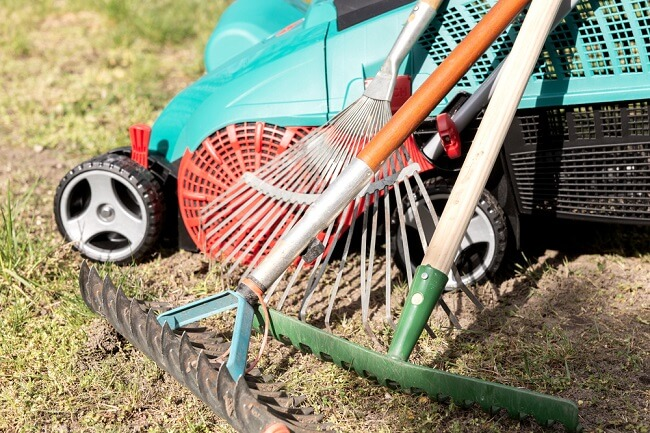 Smart Spring Lawn Clean-up