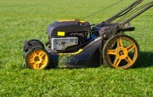 Basics Of Lawn Care Maintenance