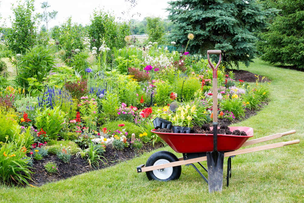Landscaping For Healthy Lawns